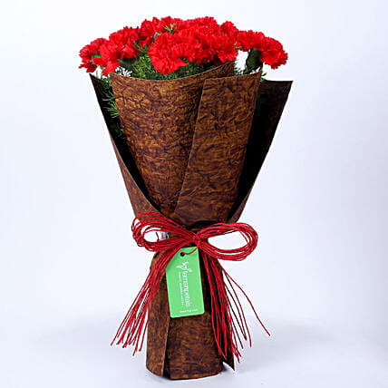 12 Red Carnations in Brown Handmade Paper: Send Carnations