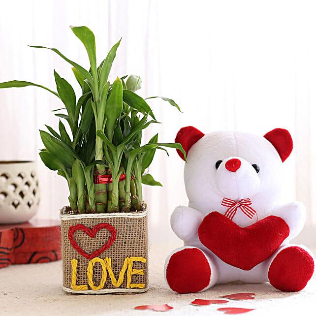 2 Layer Lucky Bamboo In Love Vase With Teddy Bear: Plants N Teddy Bears