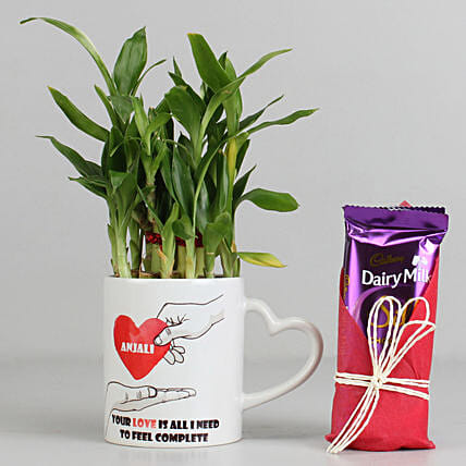 2 Layer Lucky Bamboo Plant with Dairy Milk Silk Chocolates: