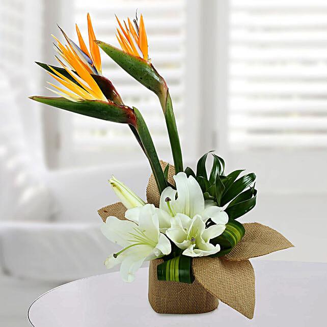 Asiatic Lily Arrangement: Lilies