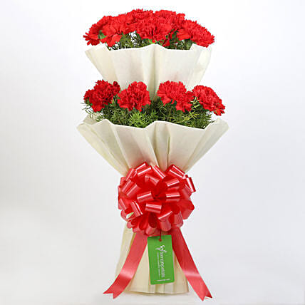 Beautiful 2 Layered Red Carnations Bouquet: Send Flower Bouquets