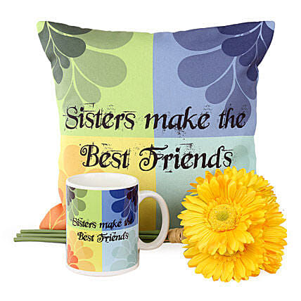 Best Friend Combo For Sister: Artificial Flowers