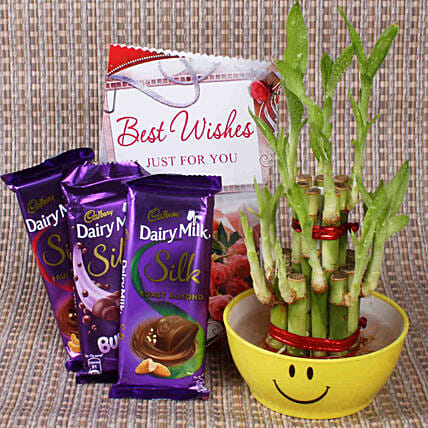 Best Wishes With Lucky Bamboo: Buy Indoor Plants