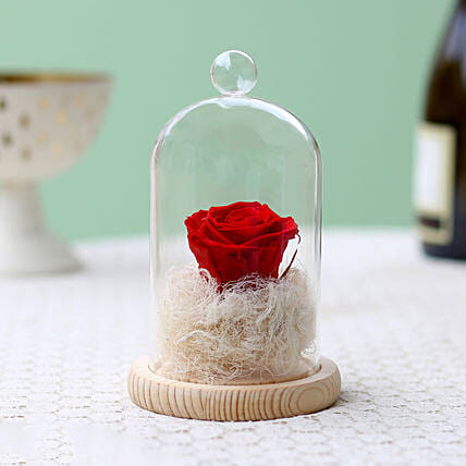 Classic- Forever Red Rose In Glass Dome: Forever Roses