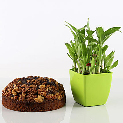 Dry Cake With 2 Layer Bamboo Combo: Combo Gifts