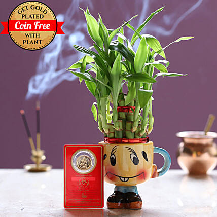 Free Gold Plated Coin With Lucky Bamboo Smiley Pot: Office Desk Plants
