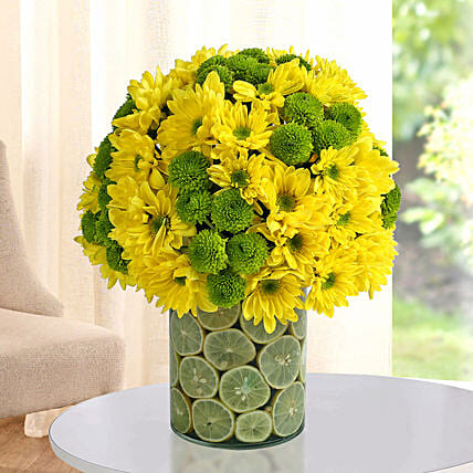 Fresh Daisy Arrangement: