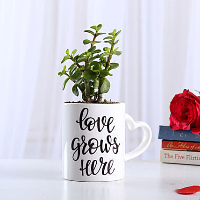 Jade Plant In Love Special Ceramic Mug: Send Plants for Valentines Day