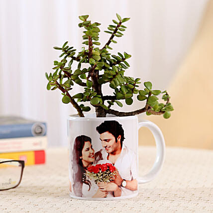 Jade Plant In Personalised Mug-White: Send Plants for Birthday
