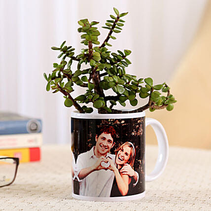 Jade Plant In White Personalised Mug: Cactus and Succulents Plants