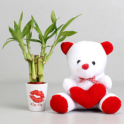 Kiss Day Special Lucky Bamboo Plant with Teddy Bear: Plant Combos