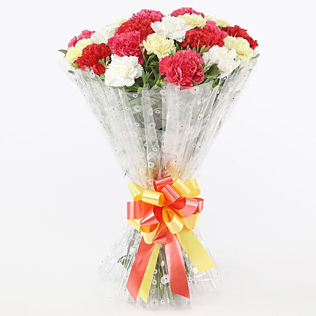 Mix Coloured Graceful Carnations Bouquet: Send Carnations