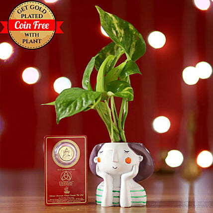 Money Plant & Free Gold Plated Coin: Outdoor Plants