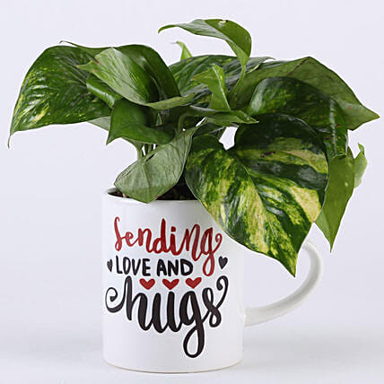 Money Plant In Love & Hugs Mug: Potted Plants