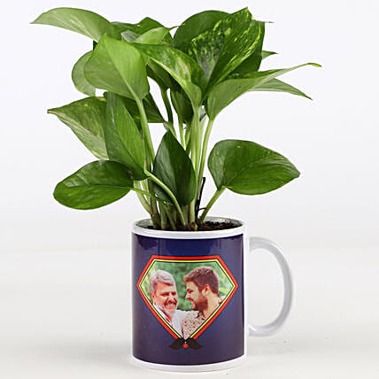 Money Plant In Personalised Mug For Dad: Father's Day Plants