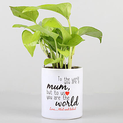 Money Plant In Printed Pot For Mom: Personalised Pot plants