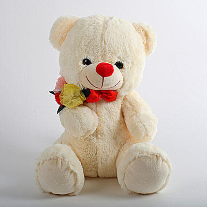 Mushy Teddy Bear: Gifts for Hug Day