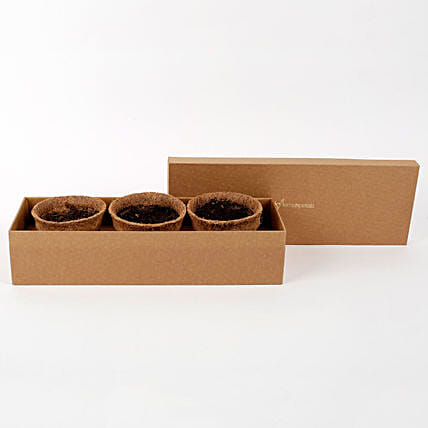 Premium Self Growing Plants Kit with Seeds & Coir Pots: Vegetable Plant-seeds