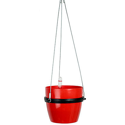 Self Watering Hanging Planter Red: Pots for Plants