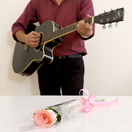 Single Pink Rose Musical Combo: Send Flowers & Guitarist Service