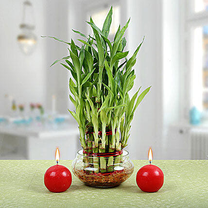 Three Layer Bamboo Plant With Red Candles: Diwali Candles