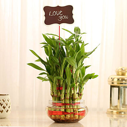 Three Layer Lucky Bamboo With Love You Tag: Buy Indoor Plants