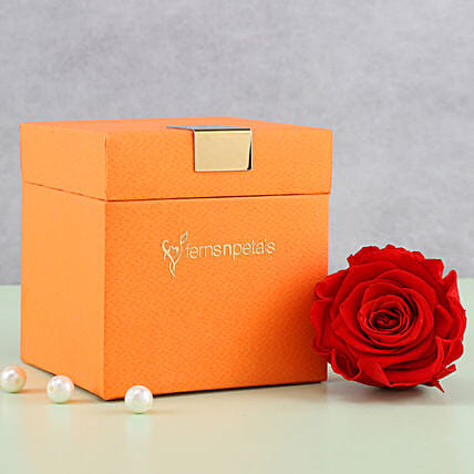 Timeless- Forever Red Rose in Orange Box: Gifts for Hug Day