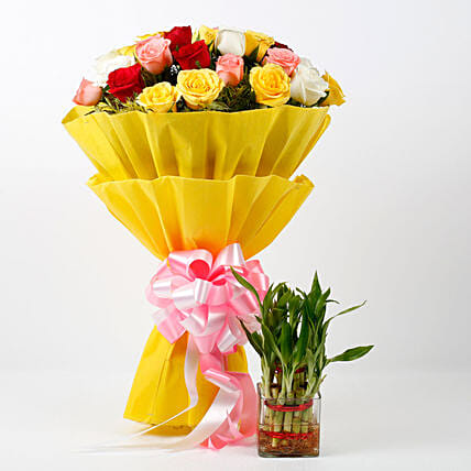 Two Layer Lucky Bamboo Plant With Mixed Roses Bouquet: Combo Gifts