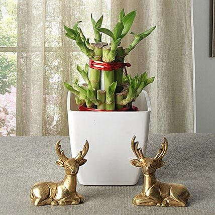 Lucky Bamboo With Deers: