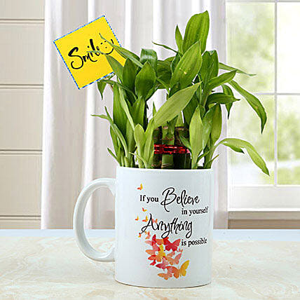 Mug with Bamboo Plant: Living Room Plants