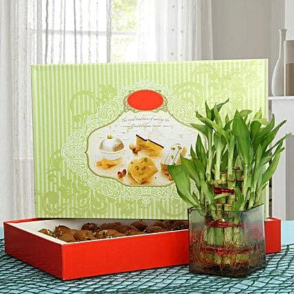 Pedha N Bamboo Delight: Order Plants n Sweets