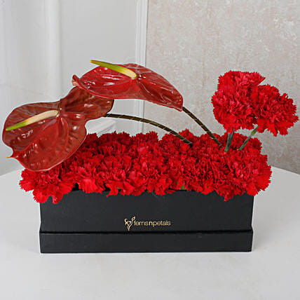 Red Floral Beauty Box: Anthuriums
