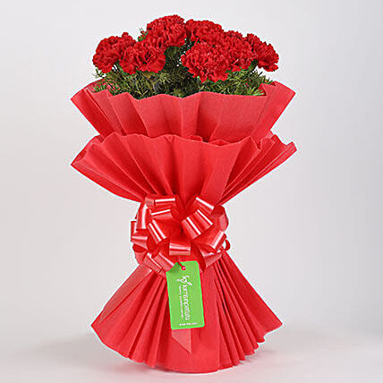 Vibrant 20 Red Carnations Bouquet: Valentines Day Carnations