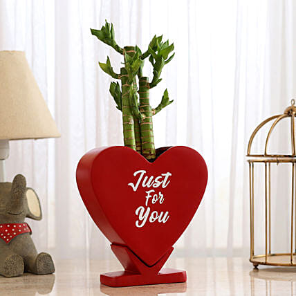 Cut Leaf Bamboo In Heart Shaped Pot: Bamboo Plants