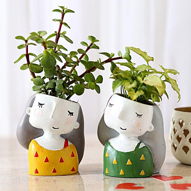 Set of 2 Indoor Plants In Raisin Pots: Succulents and Cactus Plants