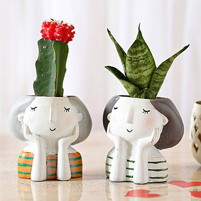 Set of 2 Plants In White Raisin Pots: Succulents and Cactus Plants