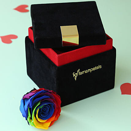 Mystic- Forever Rainbow Rose in Velvet Box: Valentines Day Flowers