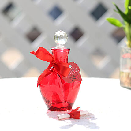 Rose Day Message in a Red Bottle: Gifts for Fiancee
