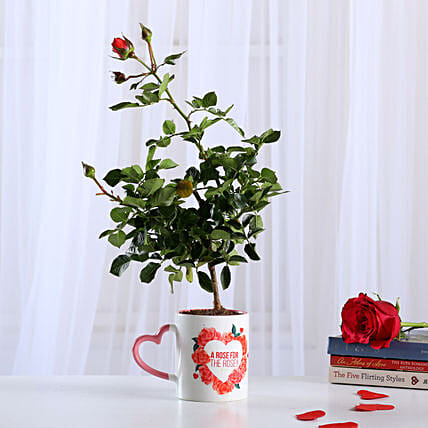 Rose Plant In Heart Print Ceramic Mug: Rose Plant Gifts
