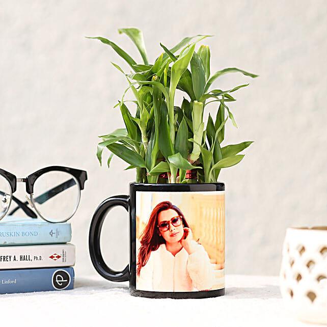 2 Layer Bamboo in Personalised Black Ceramic Mug: Buy Indoor Plants