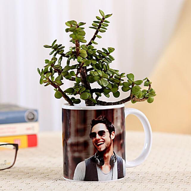 Jade Plant In Stylish Personalised Mug-White: Personalised Pot plants
