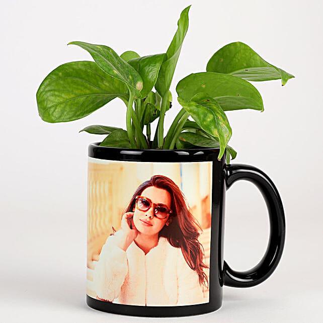 Money Plant In Personalised Mug-Black: Indoor Plants