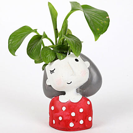 Money Plant In Winking Girl Raisin Pot: Good Luck Plants