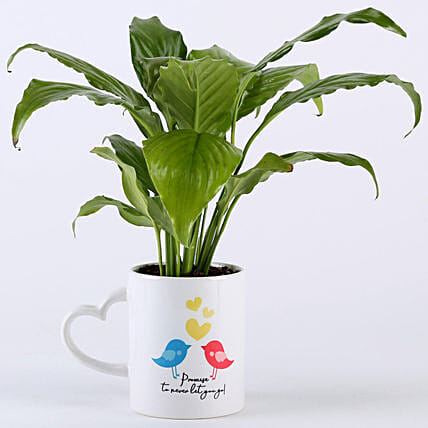 Peace Lily Plant With Promise Love Birds Mug: Potted Plants