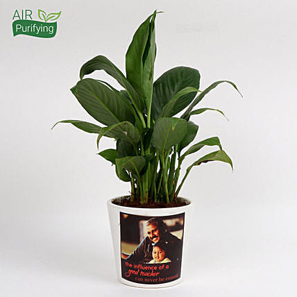 Attractive Personalised Peace Lily Plant: Personalised Pot plants