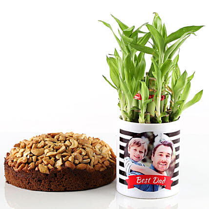Dry Cake & Bamboo Plant In Photo Mug For Dad: