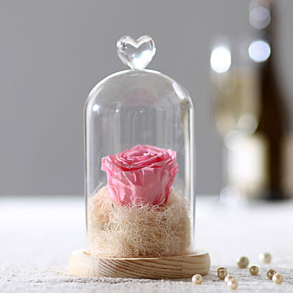 Forever Baby Pink Rose in Glass Dome: Romantic Flowers