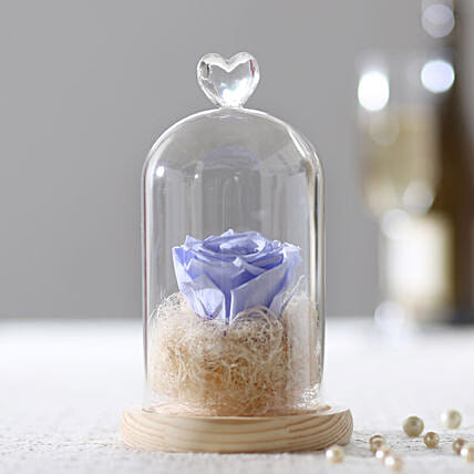 Forever Lavender Blue Rose In Glass Dome: Send Roses