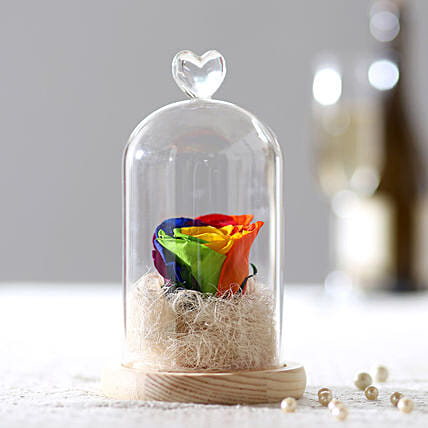 Forever Mystic Rainbow Rose In Glass Dome: Valentines Day Flowers
