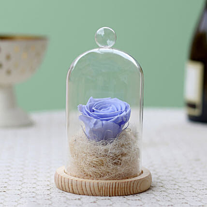 Lavender Blue Forever Rose In Glass Dome: Roses